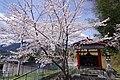 住川金比羅宮 五條市住川町 Sugawa Kompira-gū 2014.4.03 - panoramio.jpg