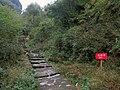 往白云寺的山路 - Trail to Baiyun Temple - 2015.11 - panoramio.jpg