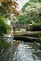 東高根森林公園 - panoramio (19).jpg