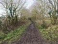 -2021-01-18 West along Weaver's Way footpath, East Ruston, Norfolk (1).jpg
