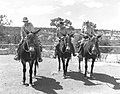 03341 Grand Canyon Rangers on Mules 1956 (4739748402).jpg