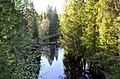 063LE. Toksovo. Okhta River.jpg