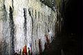 07 Kelvingrove tunnel (4073220530).jpg