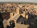 083 Seu Vella de Lleida, des del campanar.jpg