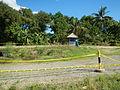 09676jfLandscapes Grasslands Plaridel Bypass Road Bonga Menor Bustos Bulacan Villagesfvf 12.JPG