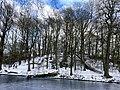 1096.Noorderplantsoen.Park.Ijs.Winter.Schaatsen.Sneeuw.Groningen.jpg