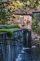 131 Gizaburuaga - Bengolea burdinola.jpg