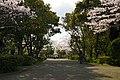 140405 Tsu Castle Tsu MIe pref Japan06s3.jpg