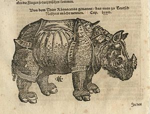 "David Kandel -  ""The ""Rhinoceros"" woodcut (34 × 20.5 cm or 11.8×8.0 inches) by David Kandel, published in Sebastian Münster's ""Cosmographia"" of 1598. The obvious  resemblance with Dürer's Rhinoceros is quite clear. (From Dr. Nuno Carvalho de Sousa Private Collections - Lisbon)"
