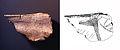17 Omóplato grabado de la cueva de Altamira.jpg