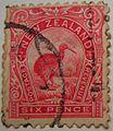 1898 kiwi 6d red.JPG