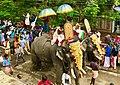 1st day Onam procession elephants in Kerala.jpg