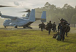 2-8 conducts embassy reinforcement during Exercise Bold Alligator 141029-M-OD001-113.jpg