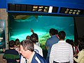 2008-05-17 Coney Island, Long Island 026 Coney Island, New York Aquarium (2677901237).jpg