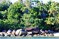 20100915 Bedarra-Island-From-Dinghy 024 secluded villas.jpg
