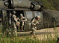 2010 Army Reserve Best Warrior Competition - Helicopter Insertion DVIDS304653.jpg