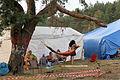 2014 Woodstock 006.jpg