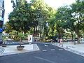 2015 Madeira Pana (3).jpg