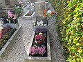 2017-10-18 (331) Friedhof Plankenstein.jpg