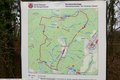 2018-12-22-December-watercolors.-Hike-to-the-Ratingen-forest. File-25.png