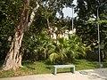 22Mehan Garden Ermita Manila Alexander Pushkin 47.jpg