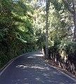 2705 Colares, Portugal - panoramio (10).jpg