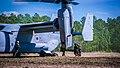 2nd CEB, VMM-365 conducts CASEVAC exercise 160310-M-VQ493-051.jpg