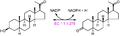 3β-hydroxy-5α-steroid dehydrogenase reaction.PNG