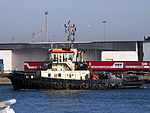 31 (tugboat, 2011) - IMO 9684031 - ENI 06105142, Port of Antwerp pic1.JPG