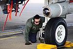 442 Fighter Wing 170214-F-KV470-172.jpg