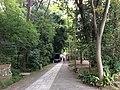 5 Chome Jindaiji Motomachi, Chōfu-shi, Tōkyō-to 182-0017, Japan - panoramio (29).jpg