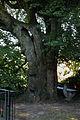 AT-122319 Gesamtanlage Augustinerchorherrenkloster 085.jpg