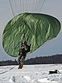A U.S. Army paratrooper with the 425th Brigade Special Troops Battalion, 4th Brigade Combat Team (Airborne), 25th Infantry Division lands after jumping from an Air Force C-17 Globemaster III aircraft April 17 130417-F-LX370-943.jpg