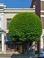 A building next to Palace Cigar Store, Victoria, British Columbia, Canada 08.jpg