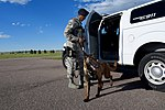 A dog and his handler, a working relationship 160614-F-SO188-014.jpg