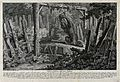 A honey-trap for a bear in the forest. Etching by J.E. Ridin Wellcome V0020982.jpg