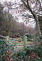 A redundant gate - geograph.org.uk - 1063420.jpg