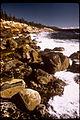Acadia National Park ACAD0894.jpg