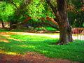 Adventure Park, Ashramam, Kollam.jpg