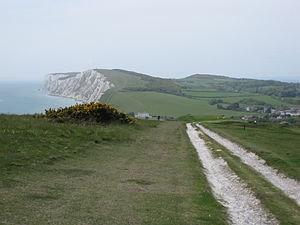 Afton Down - View of Afton Down looking towards Freshwater Bay