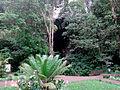 Afueras de la Cueva del Guacharo Caripe.jpg