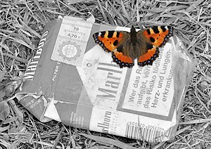 Small Tortoiseshell (Aglais urticae) on an old package of Marlboro cigarettes.