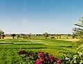Al Bairat, Luxor, Luxor Governorate, Egypt - panoramio (62).jpg