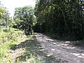 Alameda Cândido Brasil Moro - Palma - Santa Maria, foto 10 (sentido S-N).jpg - panoramio.jpg