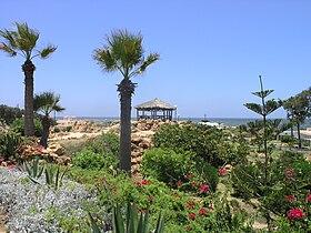 Alexandria - Montaza Palace garden.JPG