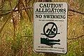 Alligator warning.jpg