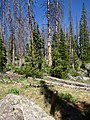 Alpine Pond Trail at Cedar Breaks - panoramio (1).jpg