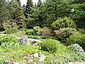 Alpine garden, Botanischer Garten München-Nymphenburg - DSC07622.JPG