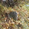 Alter Grenzstein an der Waldscheibe Rammenau.jpg