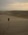 Amanhecer nas dunas do Rosado, RN.png